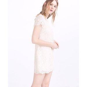 Zara Cream Lace Cap Sleeve Shift Mini Dress